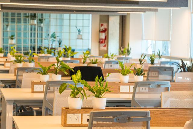 Apex America abre nuevas oficinas en Buenos Aires