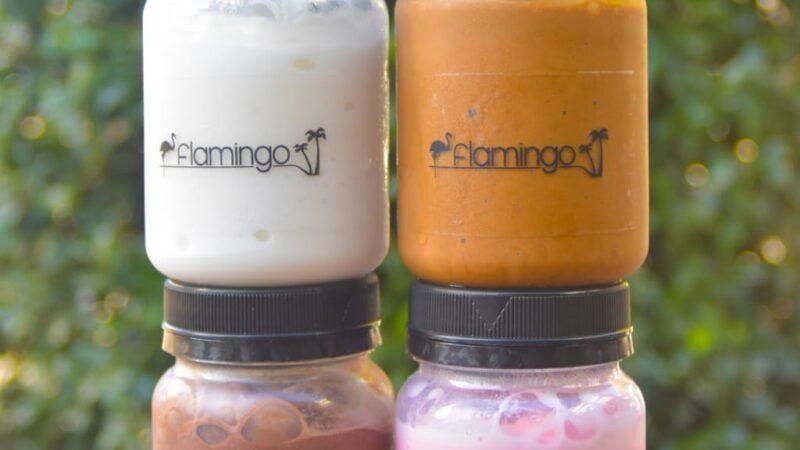 Heladería Flamingo lanza tendencias de invierno: Nuevos sabores y dos Líneas de Helados en envases reutilizables